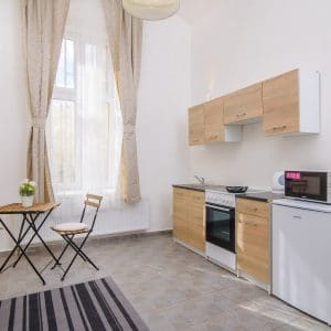 102 Cozy studio apartment in Prague for rent