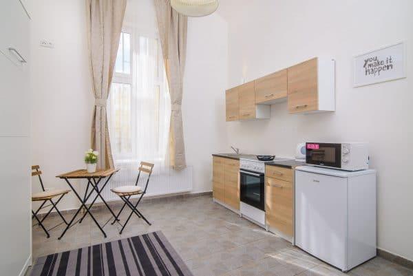 102 Cozy studio apartment in Prague for rent